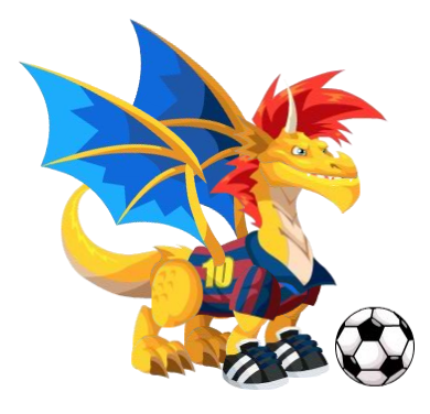 Soccer Adult